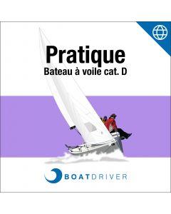 Online: BoatDriver - Pratique bateau à voile cat. D (dfie)